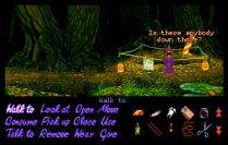 Simon the Sorcerer Amiga 24