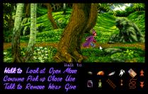 Simon the Sorcerer Amiga 28