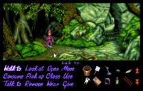Simon the Sorcerer Amiga 39