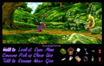 Simon the Sorcerer Amiga 41