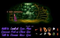 Simon the Sorcerer Amiga 63