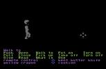 Zak McKracken C64 40