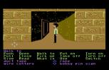 Zak McKracken C64 80