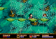 Castle of Illusion Megadrive Genesis 033