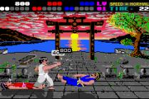 International Karate Plus GBA 18