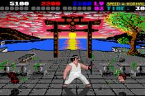 International Karate Plus GBA 24