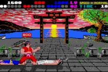 International Karate Plus GBA 48