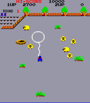 Lasso Arcade 04