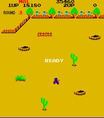 Lasso Arcade 20