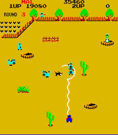 Lasso Arcade 22