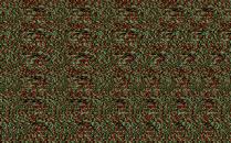 Magic Carpet PC 156