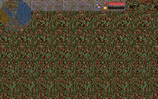 Magic Carpet PC 157