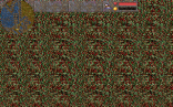 Magic Carpet PC 165