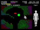 Fantastic Voyage ZX Spectrum 15