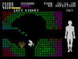 Fantastic Voyage ZX Spectrum 16