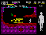 Fantastic Voyage ZX Spectrum 30