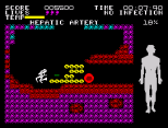 Fantastic Voyage ZX Spectrum 48