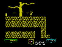 Ghouls N Ghosts ZX Spectrum 25