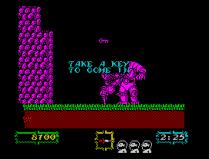 Ghouls N Ghosts ZX Spectrum 30