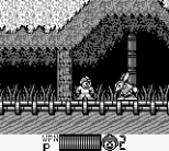 Mega Man 2 Game Boy 35