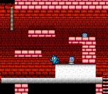 Mega Man 2 NES 039
