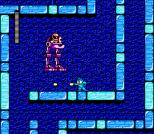Mega Man 2 NES 116