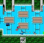 Mega Man 3 NES 08