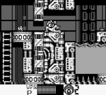 Mega Man 4 Game Boy 027
