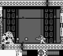 Mega Man 4 Game Boy 035