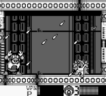 Mega Man 4 Game Boy 037