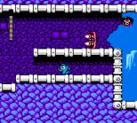 Mega Man 4 NES 048