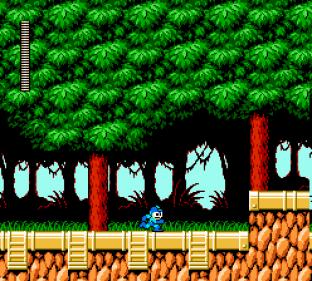 Mega Man 6 NES 056