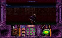Menzoberranzan PC DOS 10