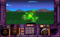Menzoberranzan PC DOS 30