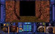 Menzoberranzan PC DOS 78