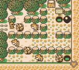 Mole Mania Game Boy 28