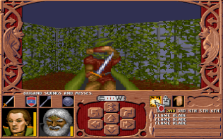 Ravenloft - Strahd's Possession PC MS-DOS 087