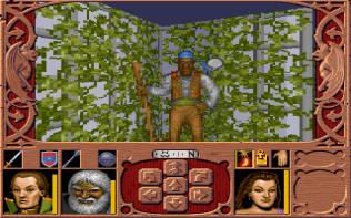 Ravenloft - Strahd's Possession PC MS-DOS 090