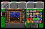 Captive Amiga 37