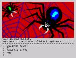 The Hobbit 128K Edition ZX Spectrum 41