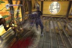 Ninja Gaiden XBox 076