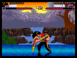 Shadow Fighter CD32 039