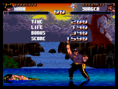 Shadow Fighter CD32 042