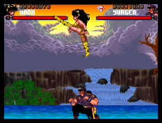 Shadow Fighter CD32 043
