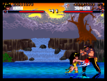 Shadow Fighter CD32 045