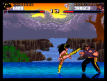 Shadow Fighter CD32 047