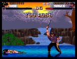 Shadow Fighter CD32 048