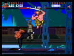 Shadow Fighter CD32 056