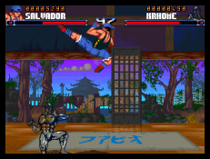 Shadow Fighter CD32 064