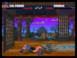 Shadow Fighter CD32 066